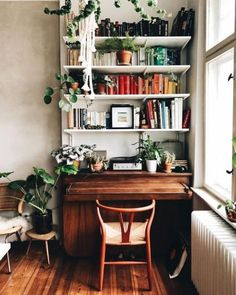 Escritório repleto de plantas.