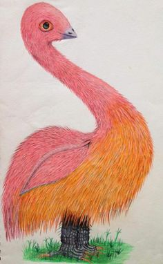I drew this bird like creature at least 10 years ago now. Drawn in colored pencils. I remember I gave more attention to detail on the face area than the rest of the body.