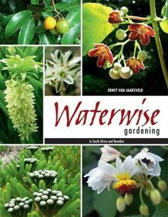 Book: Ernst van Jaarsveld - Waterwise Gardening in South Africa and Namibia Plants, African Plants, Sacred Garden, Landscape Design, Waterwise Landscaping, Outdoor Gardens, Rain Garden, Waterwise Garden, Fruit Bearing Trees