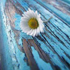 ❝Muitas vezes as reviravoltas servem para nos sacudir, para nos fazer acordar. Para mostrar que a gente merece mais, muito mais. Não vale a...