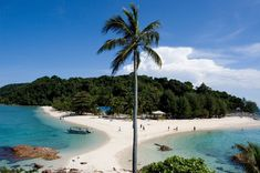 Redang Island is one of the treasured tourist destinations in Malaysia that lies at the eastern coas...