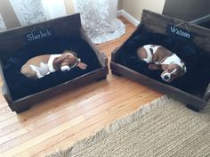 Basset hound puppies Rustic Dog Bed