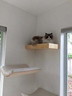 Pet Furniture Animal Perch with Hidden Compartment Wall Shelf