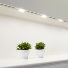 LIMENTE LED-ZIRCON Led, Lights, Plants, Furniture, Home Furnishings, Planters, Light Fixtures, Lighting, Plant