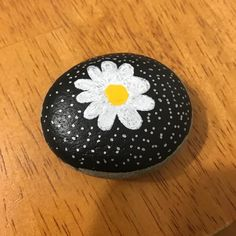 #katierocks #rocks #paintedrocks #paintedrock #rock #paint #rockpaint #rockpainting #flower #daisy #cute