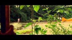 Terra Selvagem - YouTube