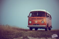 Volkswagen Séance photo en Combi avec Helmut le Bulldog   BeCombi