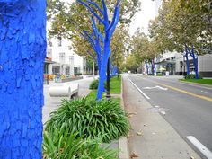 Blue Trees in Downtown Sacramento, CA