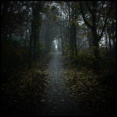 Creepy road... by ~MOSREDNA on deviantART