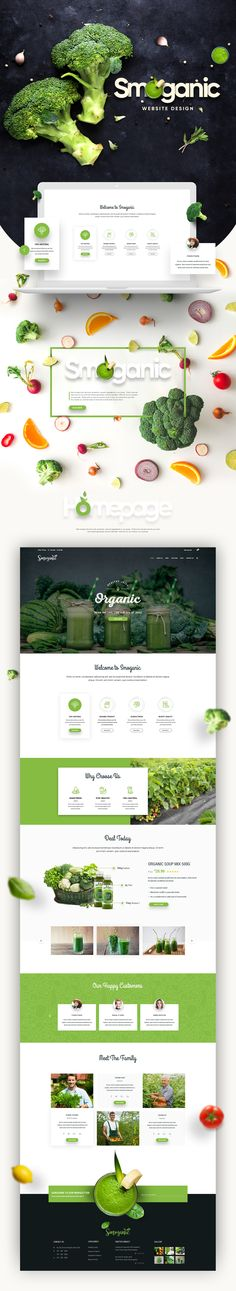 Smoganic Website Design on Behance