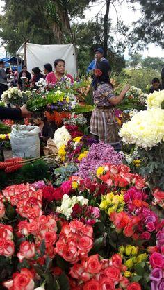 Colores para vivir - Cementerio Las Flores