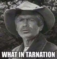 Image result for rheumatiz beverly hillbillies meme