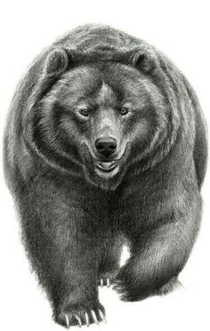 Awesome Grizzly Bear Art!
