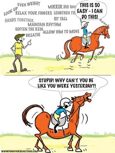 c12d9641d1 270 Best Funny Horse Quotes - Humor images