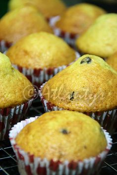 Terapia do Tacho: Queques de iogurte com pepitas de chocolate (Yougurt and chocolate chips muffins)