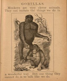 "A page from the Victorian childrens' book ""The Little One's Delight"" (book cover). The illustration was taken from Paul du Chaillu - Explorations and Adventures in Equatorial Africa (1861). -  Source: The Deep Friar"