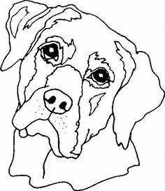 Pop art kočka, pes …