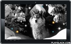 Wolf Black White Livewallpaper  Android App - playslack.com , Stylish animated illumination with exellent black the white photos of wolves in their natural habitat.Dynamic live wallpaper. Free of charge. Personalisation.We offer universal Wolf Black White livewallpaper high-quality images with thematic landscape format, that it is also possible to replace manual, sound additional animations - several options for interactivelive wallpaper on a constant elegance and convenience.Wolves at…