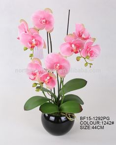 Ikebana Flower Arrangement, Flower Arrangements Simple, Orchid Arrangements, Indoor Orchids, Indoor Plants, Beautiful Gardens, Beautiful Flowers, Nylon Flowers, Phalaenopsis Orchid