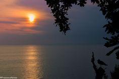 Piano di Sorrento #campeggio #bluegreencamping #mare #tramonto #gabbiano #silhouette