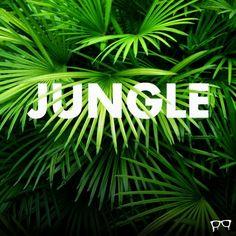 JUNGLEby BEMBUREDA Design Company