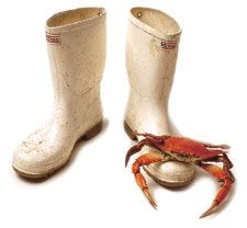 White Shrimp Boots and Crab