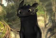 """Toothless is like, """"You did not just take fish out of my plate!"""""""