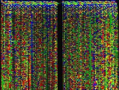 Image result for dna sequence