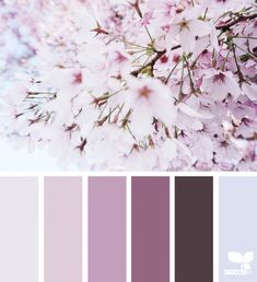 today's inspiration image for { color blossom } is by . thank you, Myla, for another breathtaking image share! Color Schemes Colour Palettes, Colour Pallette, Bedroom Color Schemes, Color Combos, Bedroom Colors, Decoration Palette, Design Seeds, Color Psychology, Modern Colors