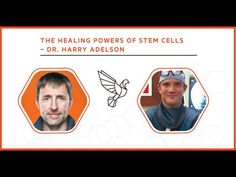 Dr. Harry Adelson has performed over 3,000 bone marrow and adipose-derived adult stem cell procedures. He's in the company of those most experienced in the w...
