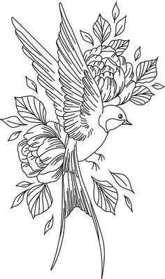 birds and flowers – Amee House Pencil Art Drawings, Bird Drawings, Art Drawings Sketches, Sketch Art, Tattoo Drawings, Bird Sketch, Vogel Tattoo, Tattoo Stencils, Animal Tattoos