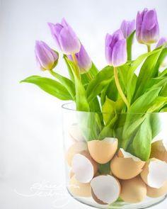 Krtkův dort: skvělý domácí recept | Kreativní Techniky Origami, Glass Vase, Plants, Origami Paper, Plant, Origami Art, Planets