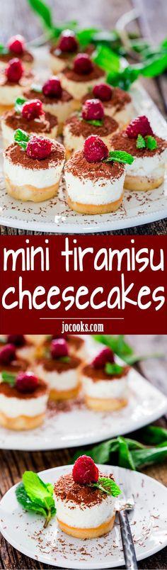 Mini Tiramisu Cheesecakes - mini decadent tiramisu cheesecakes with the classic flavors of the Italian tiramisu. Smooth and creamy, ideal for any occasion!