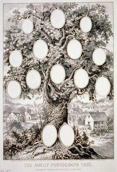 ψ Family Trees ψ diy genealogy & ancestry ideas - Family Record - Records and Registers Genealogy Chart, Family Genealogy, Family Tree Art, Family Posing, Family Pictures, Family Portraits, Heritage Scrapbooking, Tree Templates, Photo Tree