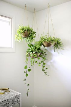 DIY Dining Room Decor Ideas - Easy Hanging Planter DIY - Cool DIY Projects for Table, Chairs, Decorations, Wall Art, Bench Plans, Storage, Buffet, Hutch and Lighting Tutorials http://diyjoy.com/diy-dining-room-decor-ideas