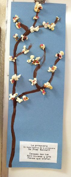 """Cherry blossom art- kids painted brown branch up one side of 6""""x18"""" light blue construction paper, glued on popcorn """"blossoms"""" and then used a q-tip to put a drop of pink paint in the popcorn's natural cup. They wrote and typed haikus about spring to glue into the open corner."""