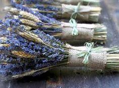 Bildergebnis für lavendel getrocknet deko