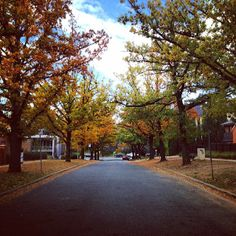 Instagrammer thelaureningram thinks the Canberra suburb of Braddon is gorgeous in the autumn