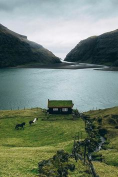 Saksun, Faroe Islands, by Niklas