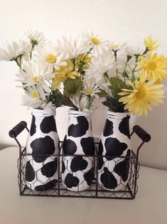 Cow Milk Bottles with Holder Painted Bottles Painted Milk Bottles Country Kitchen Decor Cow Decor Black & White Decor Farmhouse Decor Black Kitchen Black Bottles Country Cow Decor Farmhouse Holder Kitchen Milk Painted White Cow Kitchen Decor, Cow Decor, Kitchen Themes, Wall Decor, Country Farmhouse Decor, Farmhouse Kitchen Decor, Farmhouse Style, Farmhouse Ideas, Country Kitchens