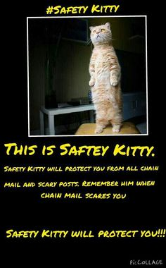 Safety kitty!
