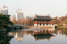 Joong-Ang Park, Korea