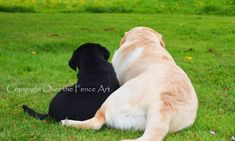 Labrador Best Friends Photo Greeting Card  Dog Portrait Card by overthefenceart on Etsy