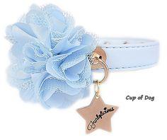 "Collier chien Funkylicious ""New Flower"" Bleu https://www.cupofdog.fr/collier-harnais-chihuahua-petit-chien-xsl-243.html"