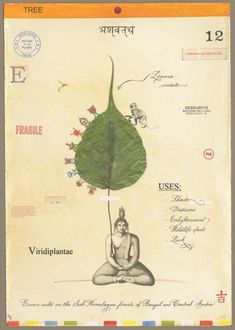 Bodhi with Buddha