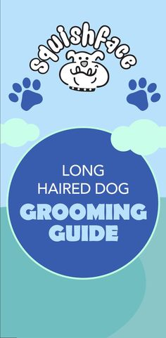 Curious how to groom a Long Haired dog? Just as you brush your hair every day, long-haired pups need their hair brushed regularly too. Regular brushing will prevent any tangles from forming into unmanageable knots, and will also help prevent the fur from becoming matted. Learn more in this grooming guide! #doggrooming #dogtips Itchy Dog Remedies, Dog Tear Stains, English Bulldog Care, Dog Skin Allergies, Wrinkly Dog, Dog Hot Spots, Dog Grooming Tips, Dog Health Tips, Dog Cleaning