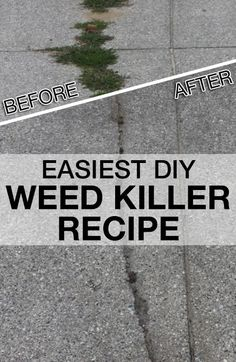 Ditch the Toxins with this Easiest Homemade Weed Killer! Ditch the Toxins with this Easiest Homemade Weed Killer! growing stuff Find out how to make the Easiest and Cheapest Homemade Weed Killer and why.