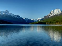 bowman lake glacier
