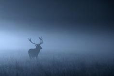 """500px / Photo """"into the night...."""" by Mark Bridger"""