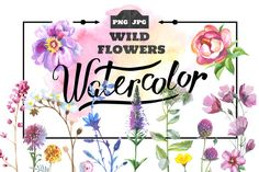Wild Flowers watercolor by MyStocks on @creativemarket
